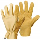 GANTS DE MANUTENTION EPSCPS 25/12